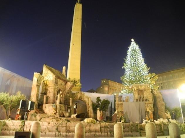E' calabrese l'albero di Natale che svetta in Piazza San Pietro