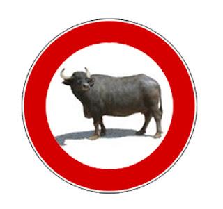 bufale